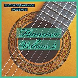 Flamenco Vol. 2